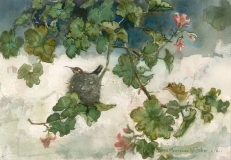 """""""Hummingbird in the Nest"""" 1982 © Eileen Monaghan Whitaker 14x20 inches Watercolor"""