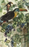 """""""Toucan in the Grapevines"""" 1982 © Eileen Monaghan Whitaker N.A.  14x22 inches Watercolor"""