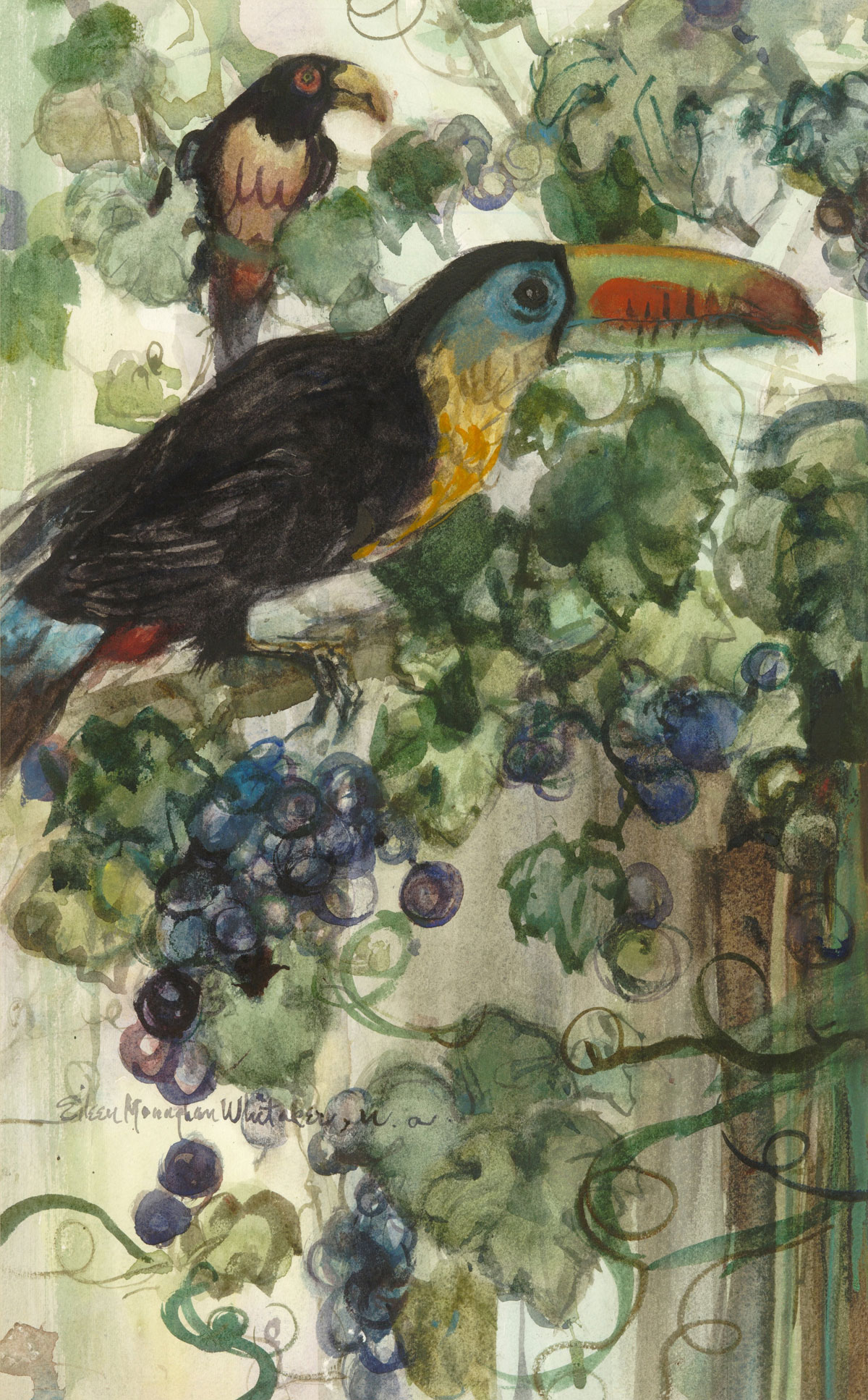 """Toucan in the Grapevines"" 1982 © Eileen Monaghan Whitaker  14x22 inches Watercolor"