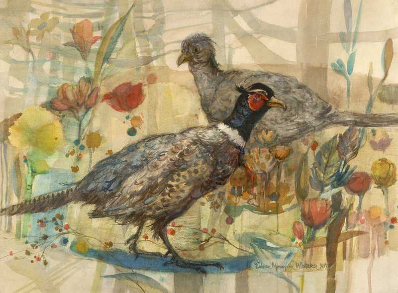 """Pair of Pheasants"" 1982 © Eileen Monaghan Whitaker (size unknown) Watercolor"