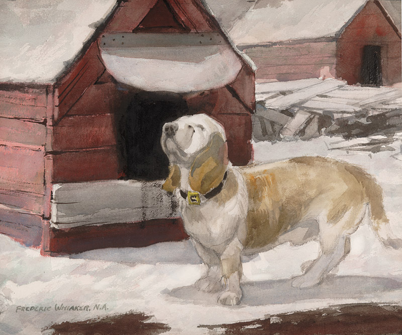 """My Friend Bassett"" © Frederic Whitaker (size and date unknown) Watercolor"