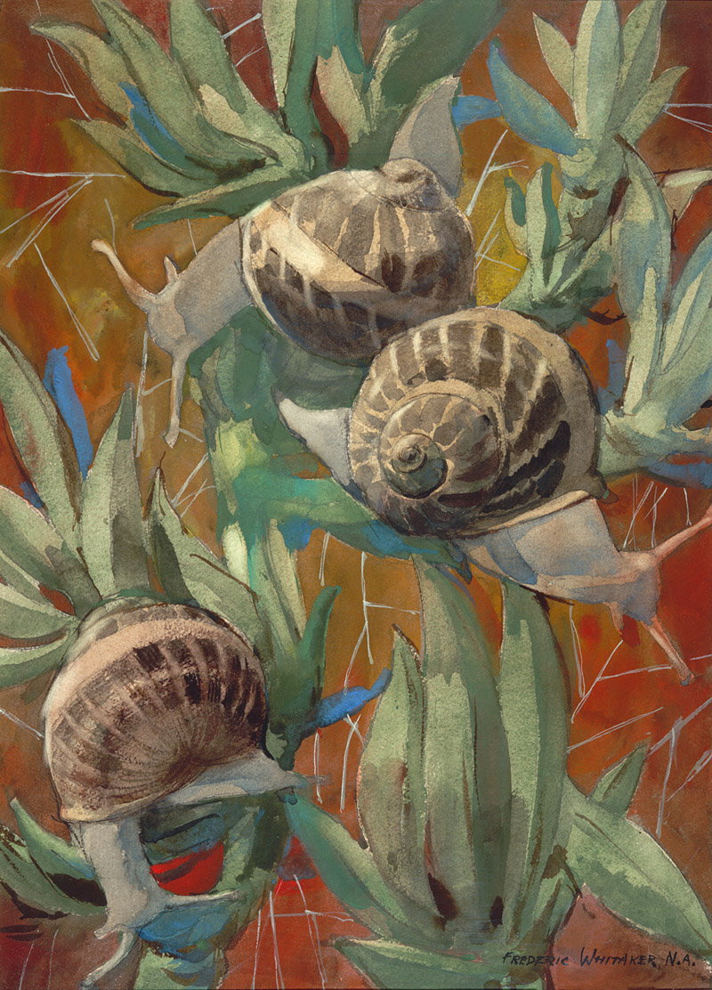 """Slow - Snails at Work"" 1969 © Frederic Whitaker (size unknown) Watercolor"