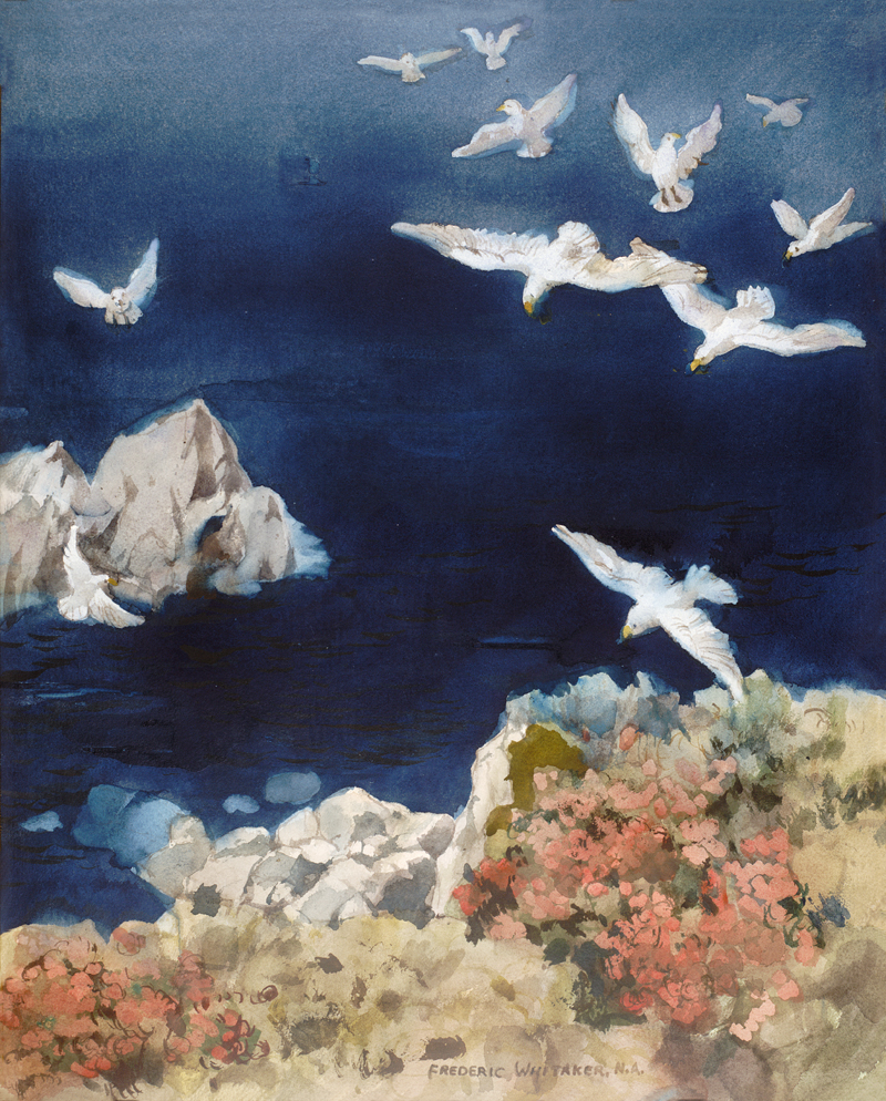 """Seagulls off La Jolla"" © Frederic Whitaker (size and date unknown) Watercolor"