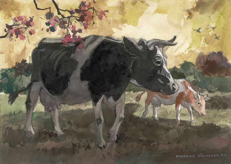 """Holstein""  1973 © Frederic Whitaker (size unknown)  Watercolor"