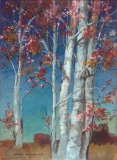 """""""Ruddy Maples"""" 1975 © Frederic Whitaker 22x30 inches"""