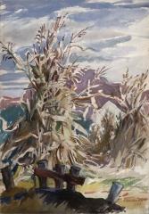 """Corn Shocks"" 1947 © Frederic Whitaker 22x15"