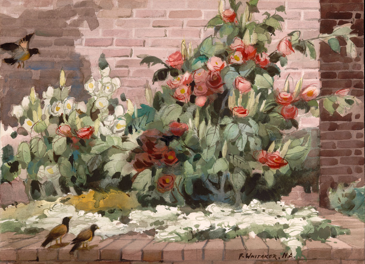 """Garden Details"" 1967 © Frederic Whitaker 22x30 inches Watercolor"