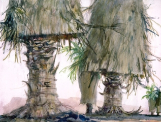 """Washington Palms"" 1970 © Eileen Monaghan Whitaker 22x30 inches Watercolor"