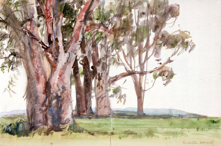 """Eucalyptus Grove"" © Eileen Monaghan Whitaker 11x17.75 inches"