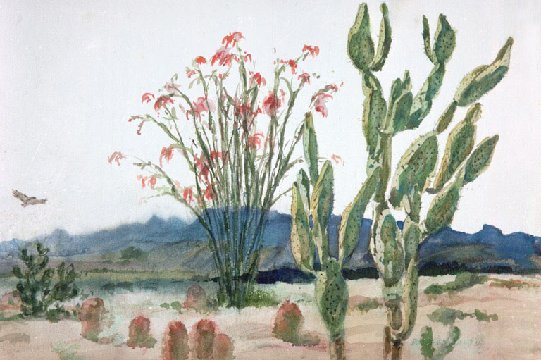 """Borrego Cactus"" 1982 © Eileen Monaghan Whitaker 14x22 inches Watercolor"