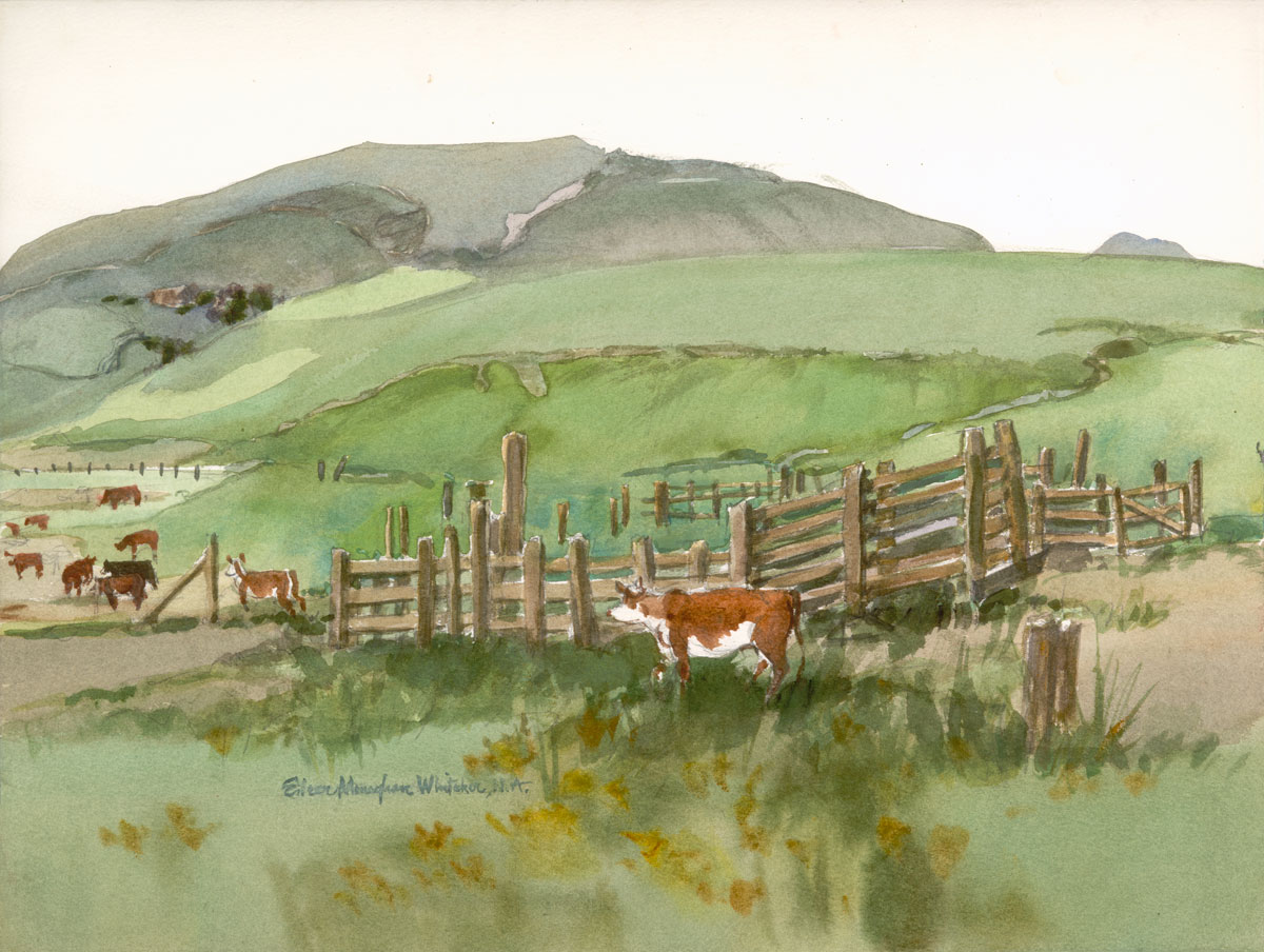 """""""Olivenhain Pastoral Scene"""" 1983 © Eileen Monaghan Whitaker 15x20 inches Watercolor"""