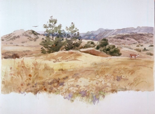 """Santa Ysabel Valley"" © Eileen Monaghan Whitaker N.A. 22x30 inches Watercolor"