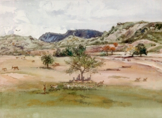 """San Diego Wild Animal Park"" 1984 © Eileen Monaghan Whitaker N.A. 14x20 Watercolor"