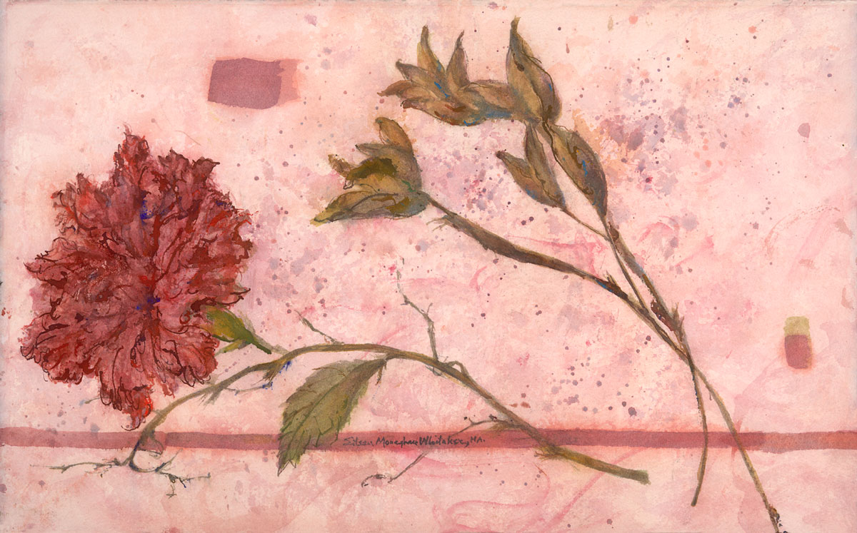 """Hibiscus and Seed Pods"" 1999 © Eileen Monaghan Whitaker N.A.  14x22.5 Watercolor"