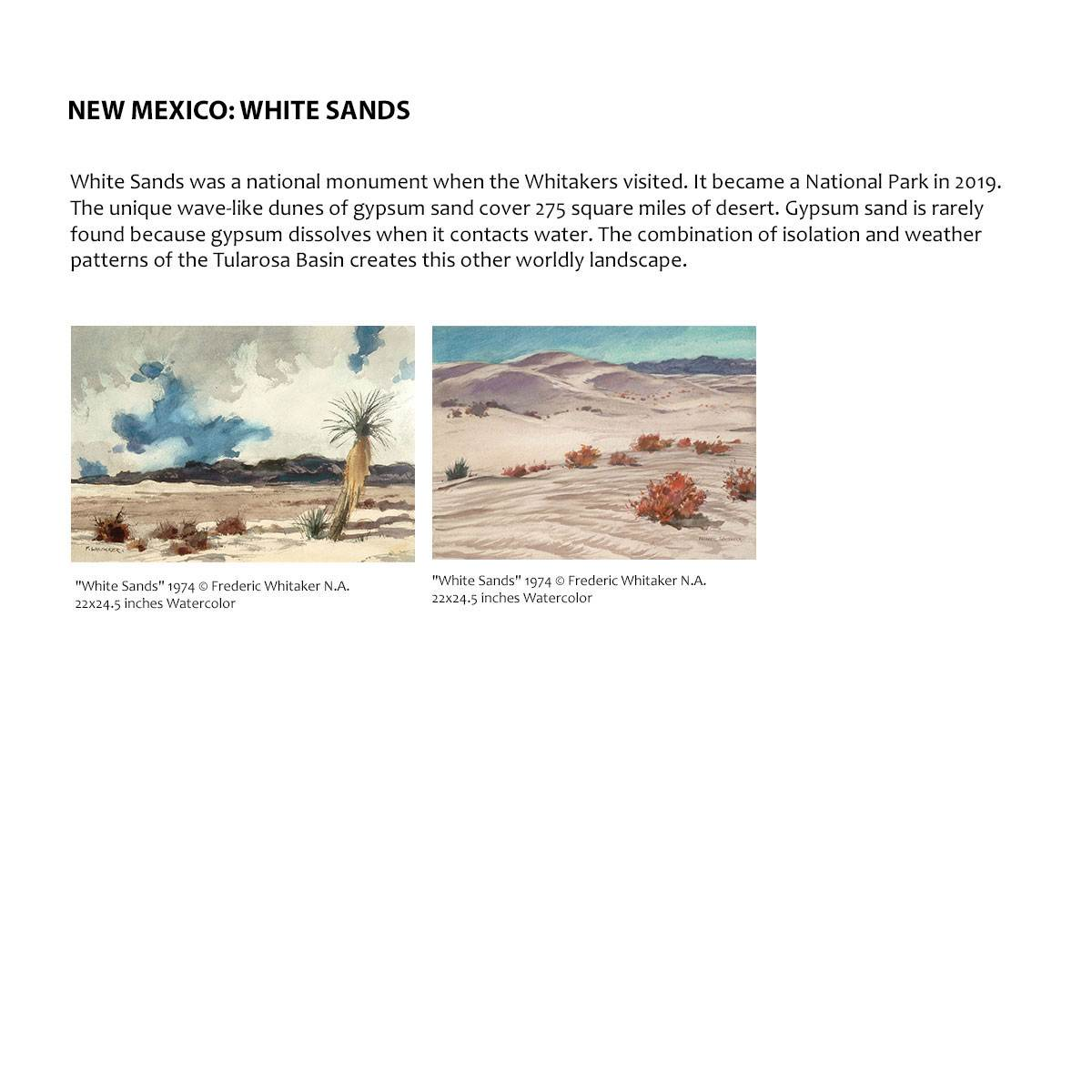 New Mexico: White Sands