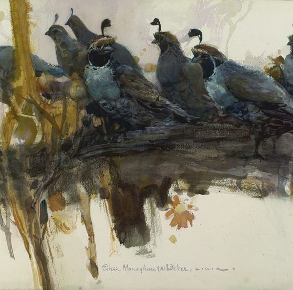 """Quail Perch"" 1970 © Eileen Monaghan Whitaker (size unknown)"