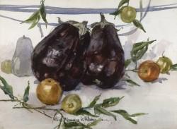Eggplant Study